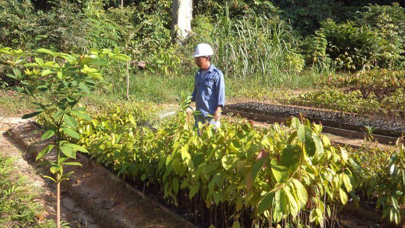 ptcarusindonesia16